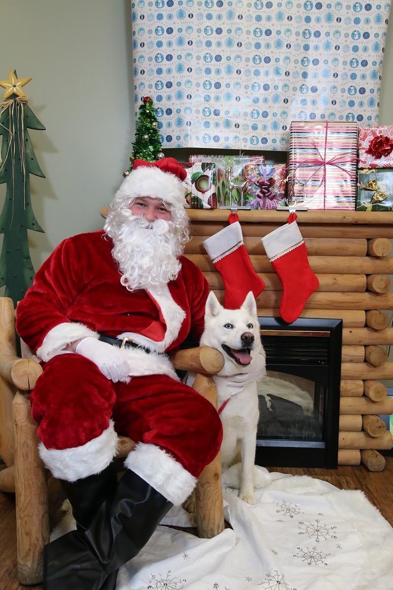 IMAGE: https://blakec-photography.smugmug.com/Santa-PAws-Photos-12-05-15/i-jJCvTM5/0/X3/Santa%20Paws_007-X3.jpg